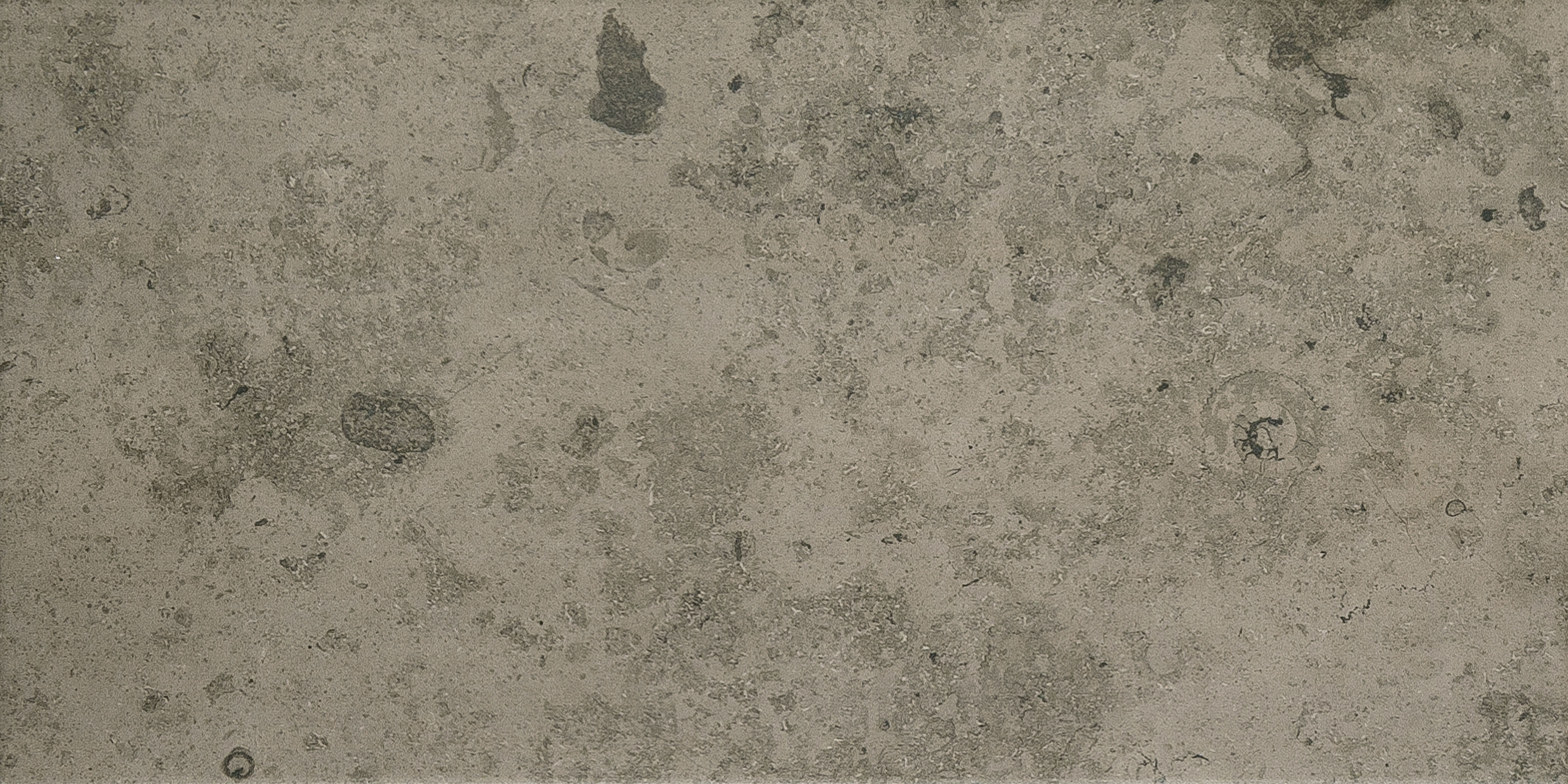 Azulev Fossil Stone Gris Porcelain Wall & Floor Tiles (600x300mm)